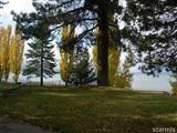 Al Tahoe beach pic2