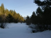 Meadow Front Lot For Sale in South Lake Tahoe